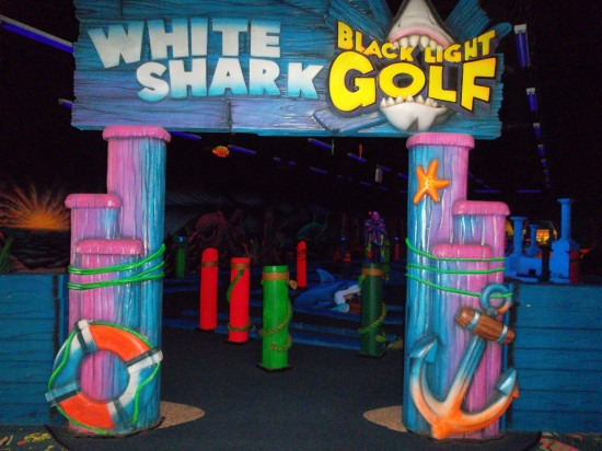 Rinkside Sports Blacklight Mini Golf